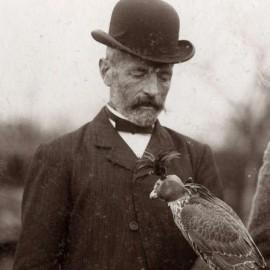 Karel Mollen met een afgerichte valk op zijn arm. De valk draagt een huif die door Karel Mollen werd vervaardigd.